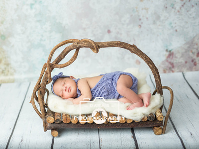 Sunrise Florida newborn baby photography purple nest newborn girl on log bed